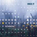 voice_it